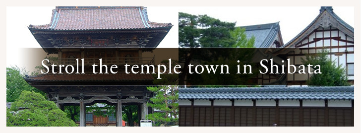 Stroll the temple town in Shibata